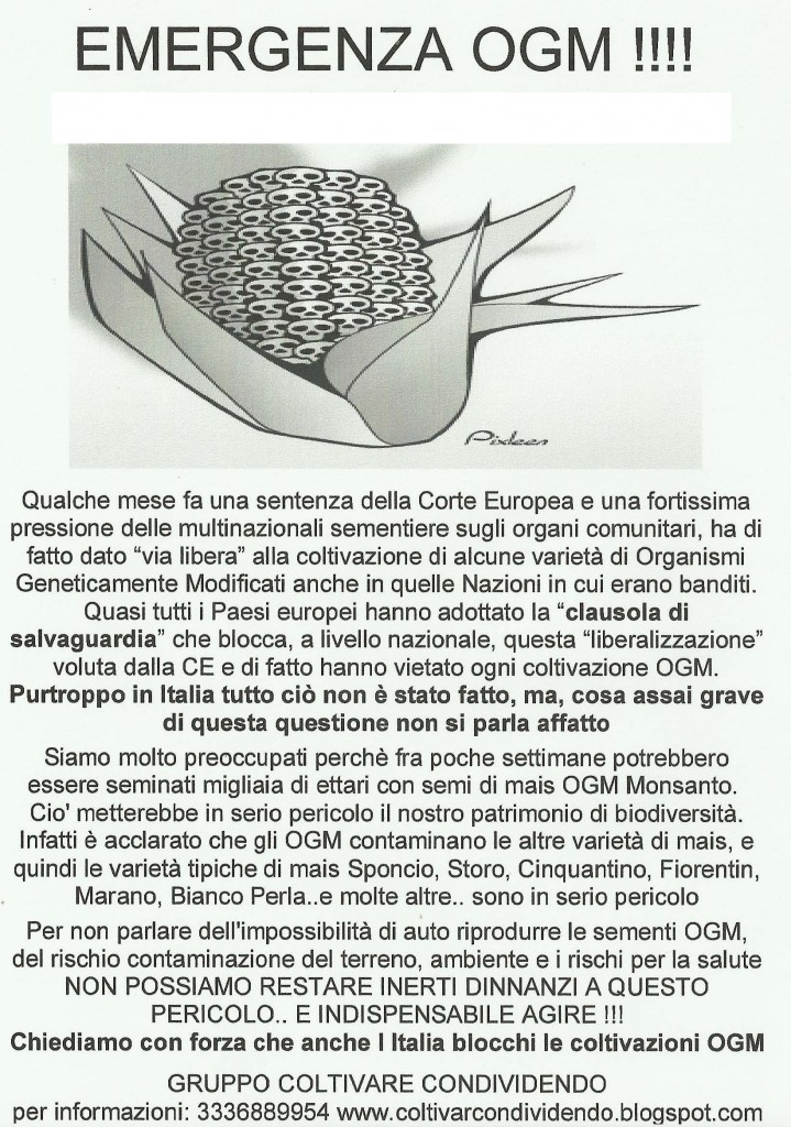 volantino OGM1